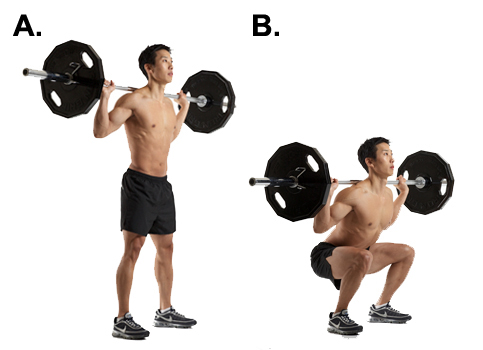 How Many Squats a Day Should I Do-Practical Guidance and ...